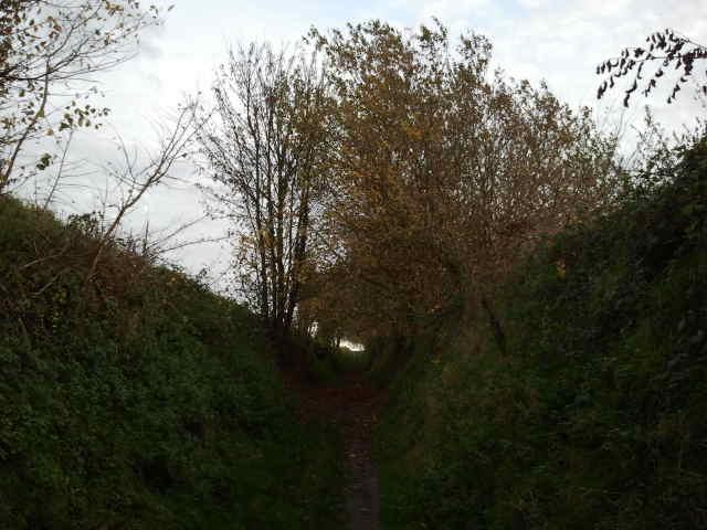 Hollow road / Holle weg Leefdaal